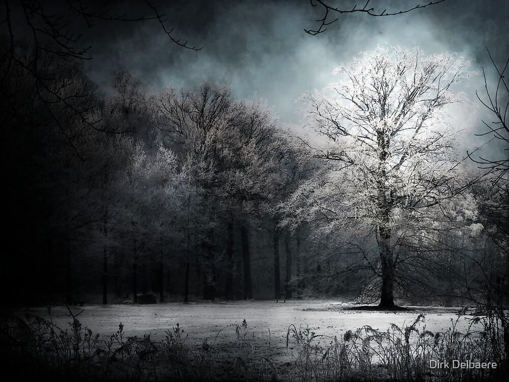 White Tree by Dirk Delbaere