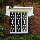 Cottage Window by AnnDixon
