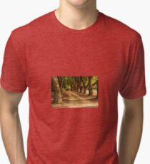 Countryside Tri-blend T-Shirt