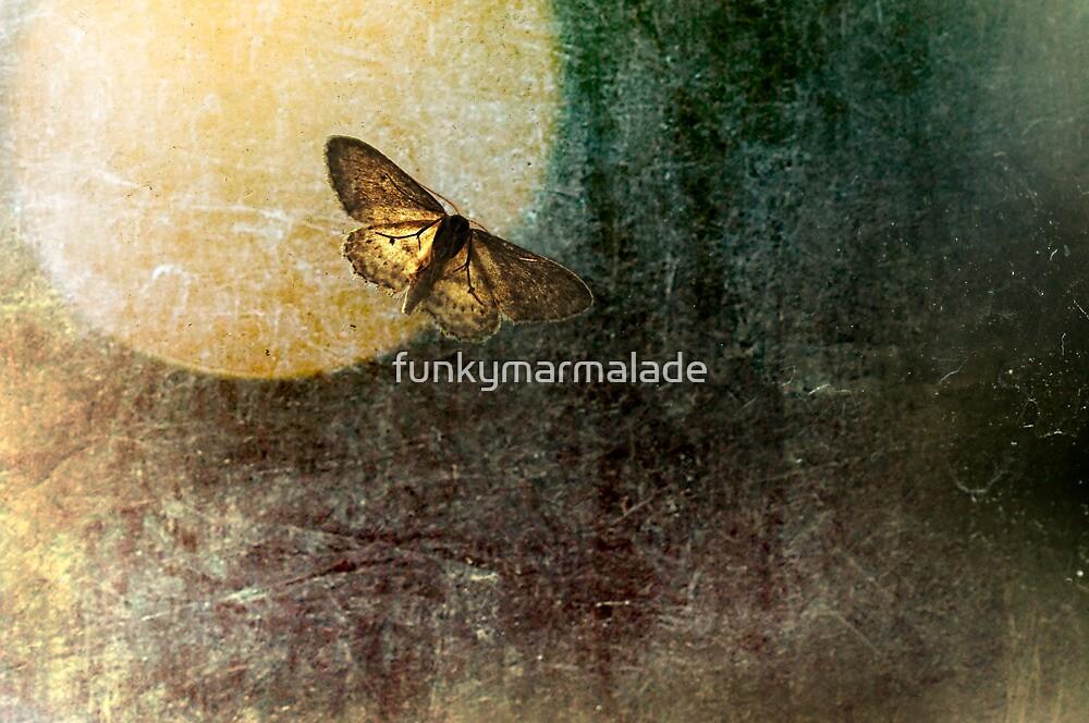 *moth ball* by funkymarmalade