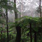 Leura mist by LenitaB
