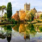 Wells Cathedral by Tiana  McVay