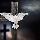 The Crucifixion of Peace by JulieM