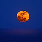 Moonrise Over The Pacific Ocean  by Alex Preiss