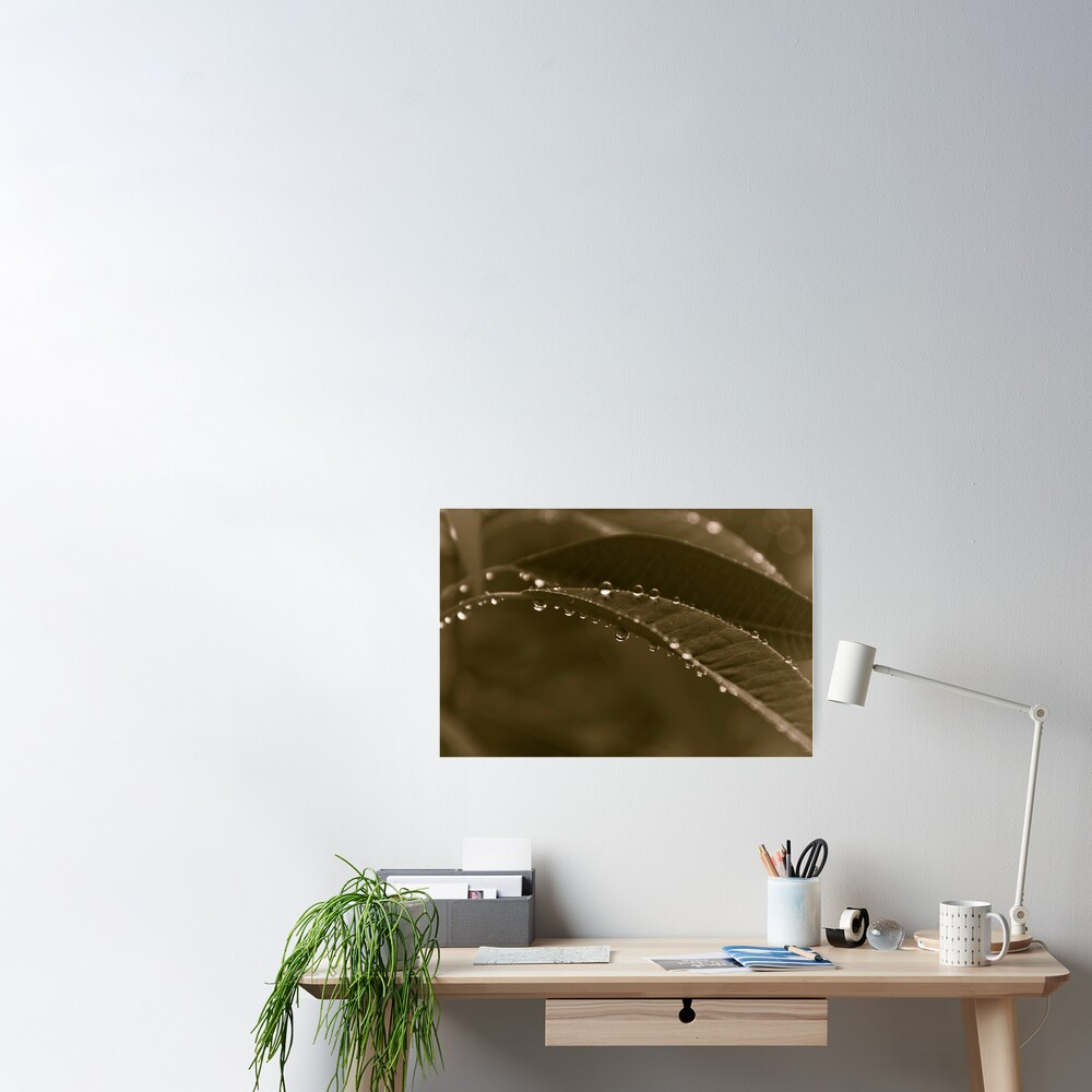 Grey Day Poster
