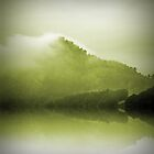 Green Mountain Mist by Berns