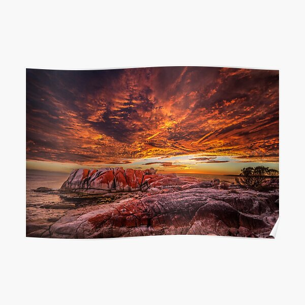 Sunrise at the Bay of Fires Poster