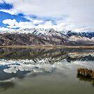 Sierra Reflecting by marilyn diaz