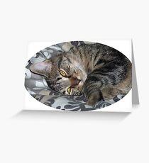 Coco le chaton Carte de vœux