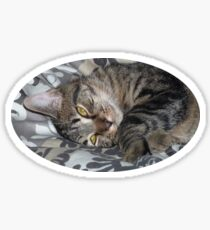 Coco le chaton Sticker