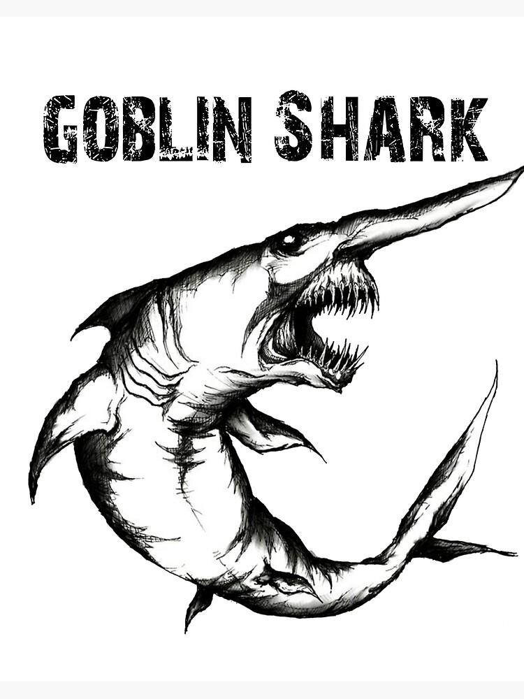 Impression Rigide Requin Gobelin Chemise Requin Gobelin Dessin Requin Gobelin Requin Chemise Requin Dessin Requin Cadeau Biologiste Par Galvanized Redbubble