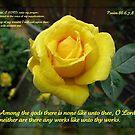 Supplication - Psalm 86 von BlueMoonRose