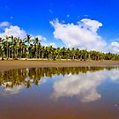 Coco Beach by Barbara  Brown