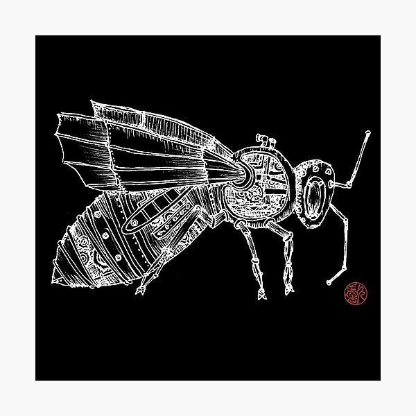 Steampunk Fly Photographic Print