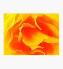 Yellow Time Photographic Print