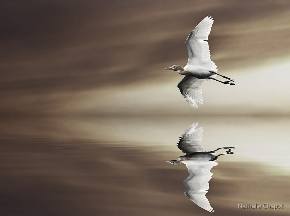 Taking Flight by Nathalie Chaput