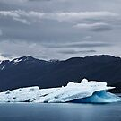 Iceberg in Tracy Arm Fjord 3 by Alex Preiss