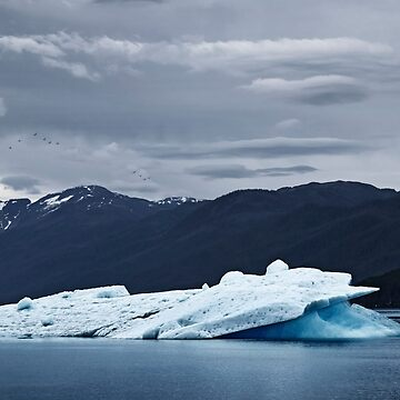 Iceberg in Tracy Arm Fjord 3 by alex4444