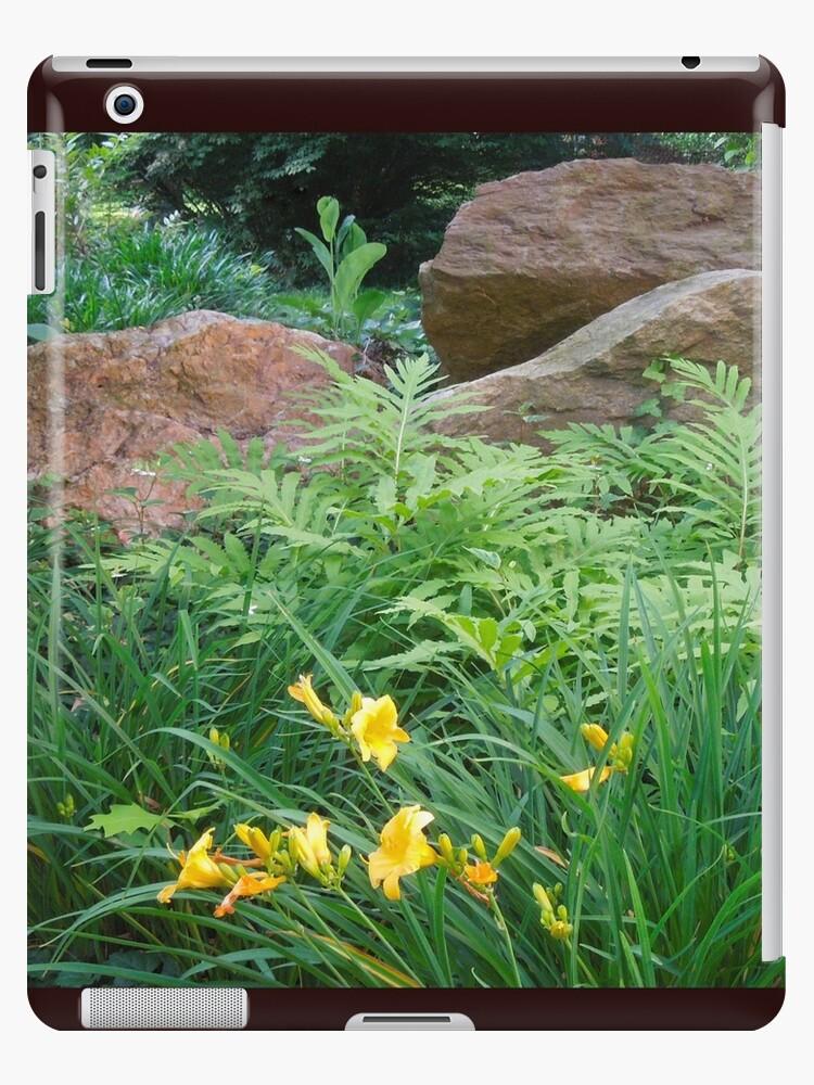 Cinnamon Fern and Boulder Garden by ginawaltersdorf