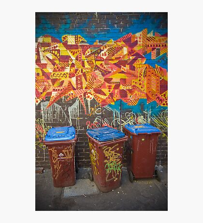 Croft Alley Bins Photographic Print