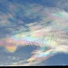 fish tail sky by Doreen Connors