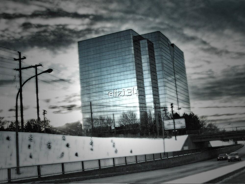 City Winter Scene by eliz134