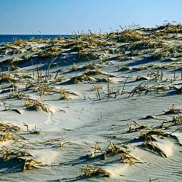 The Dunes by cometman