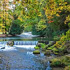 Germany. Munich. English Garden. River. by vadim19