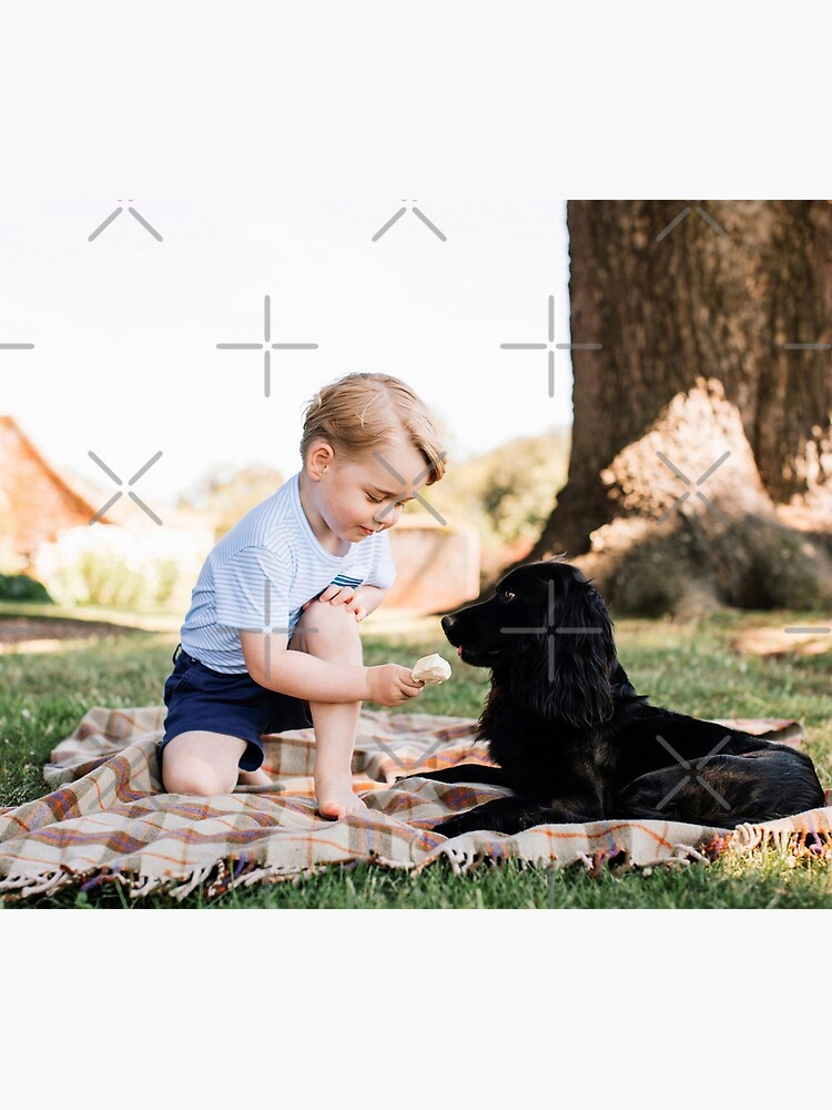 Prince George with dog by ValentinaHramov