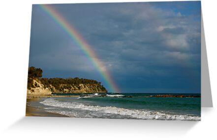 chasing rainbows by natalie angus