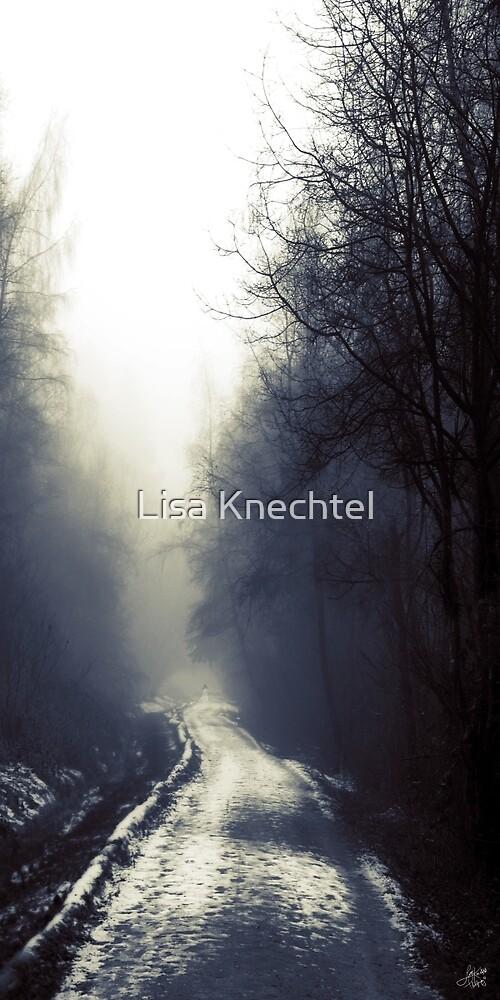 Beyond by Lisa Knechtel