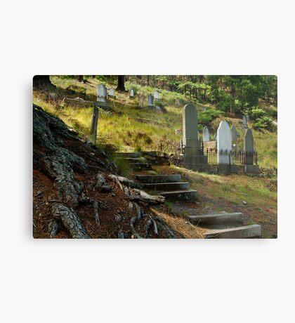 Walhalla Cemetery Metal Print