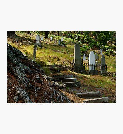 Walhalla Cemetery Photographic Print