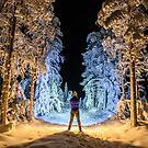 Winter Wonderland by stephenk