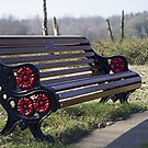 The red and black bench by Steve plowman
