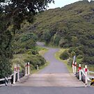 Main Road, Great Barrier Island........!! by Roy  Massicks