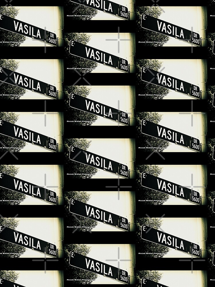 Vasila Drive, Las Vegas, Nevada by Mistah Wilson Photography by MistahWilson