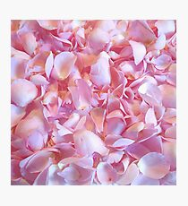 Girly pink chic cute rose petals floral pattern Photographic Print