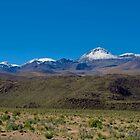 Altiplano. Región de  Antofagasta . CHILE. by cieloverde