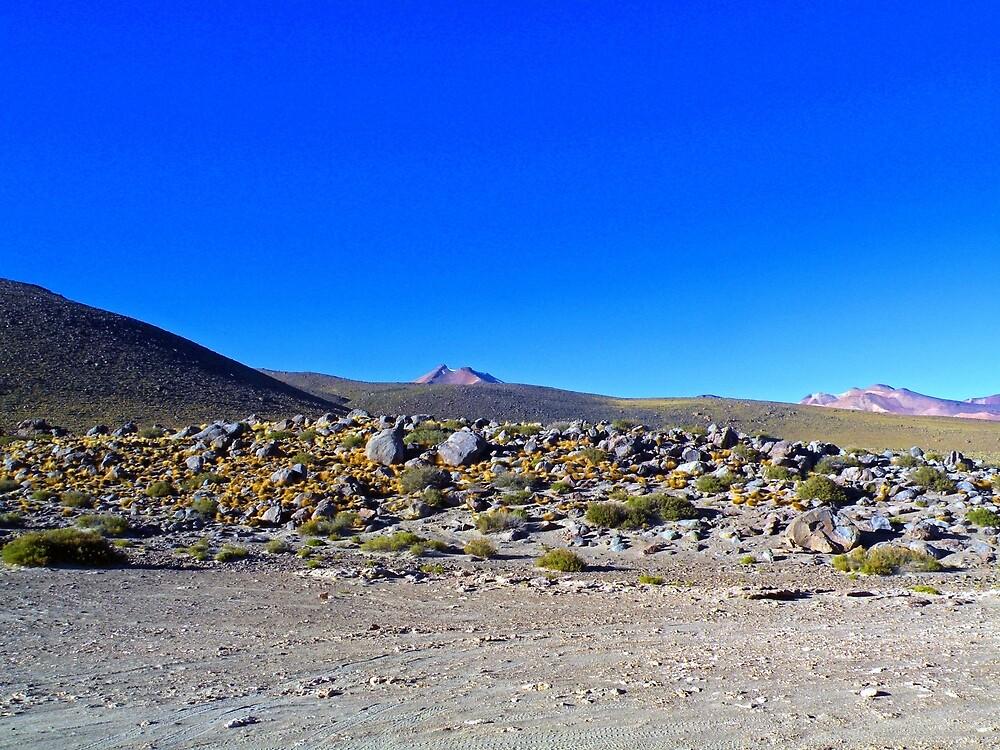 Valle de la Luna. Región de Atacama.CHILE. by cieloverde