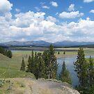 Hayden  Valley by Feedman