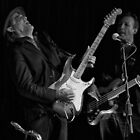 Claude Carranza - Lead Guitar - The Black Sorrows by Stuart Anderson