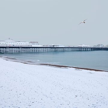 Brighton Palace Pier in Snow by chuckirina