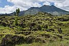 Mount Batur by Werner Padarin