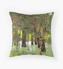 Paper Bark Wetlands  Throw Pillow