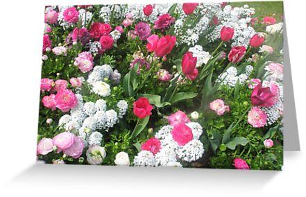 Spring Affair by Melissa Park