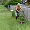 Backyards of Queensland