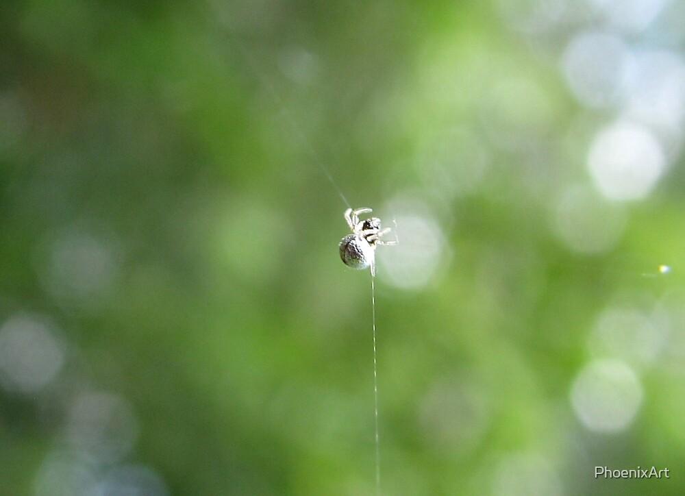 Quicksilver Spider by PhoenixArt
