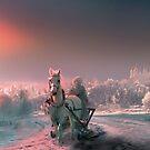Russian Winter by Igor Zenin
