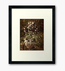 Vintage Planter Framed Print